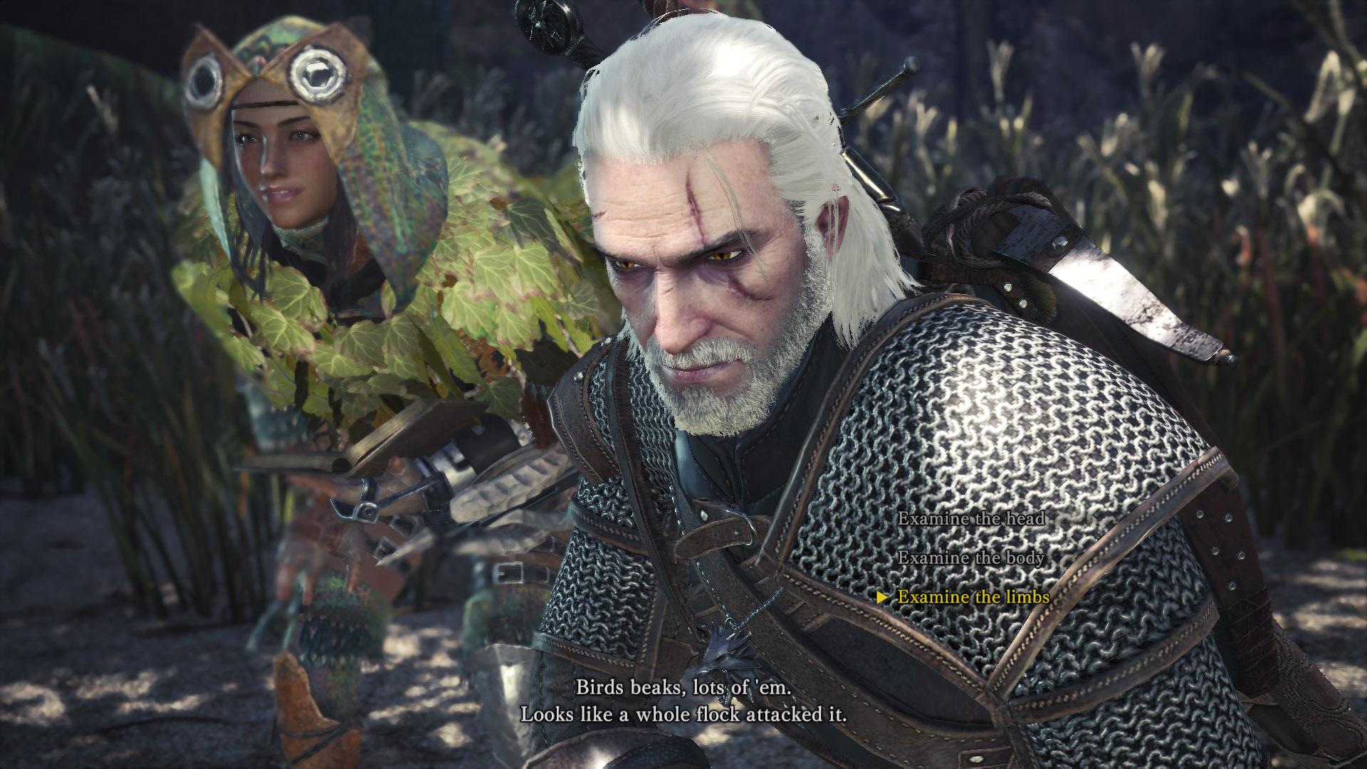 Geralt And Ciri Layered Armor Monster Hunter World Guide Stash