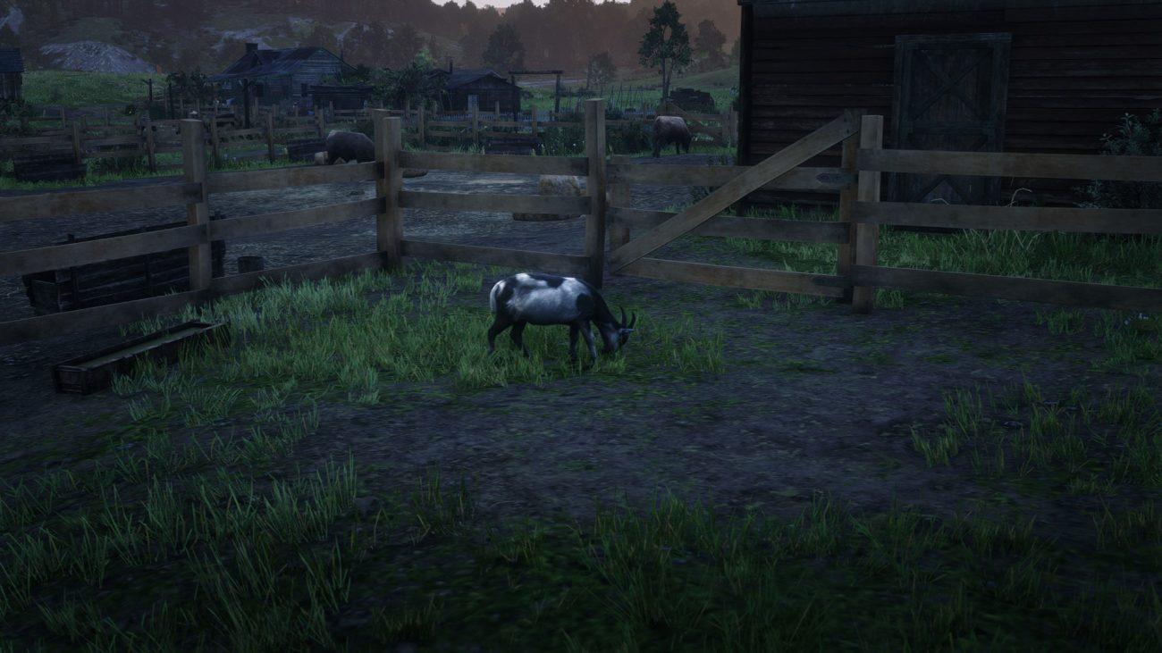 Alpine Goat Location