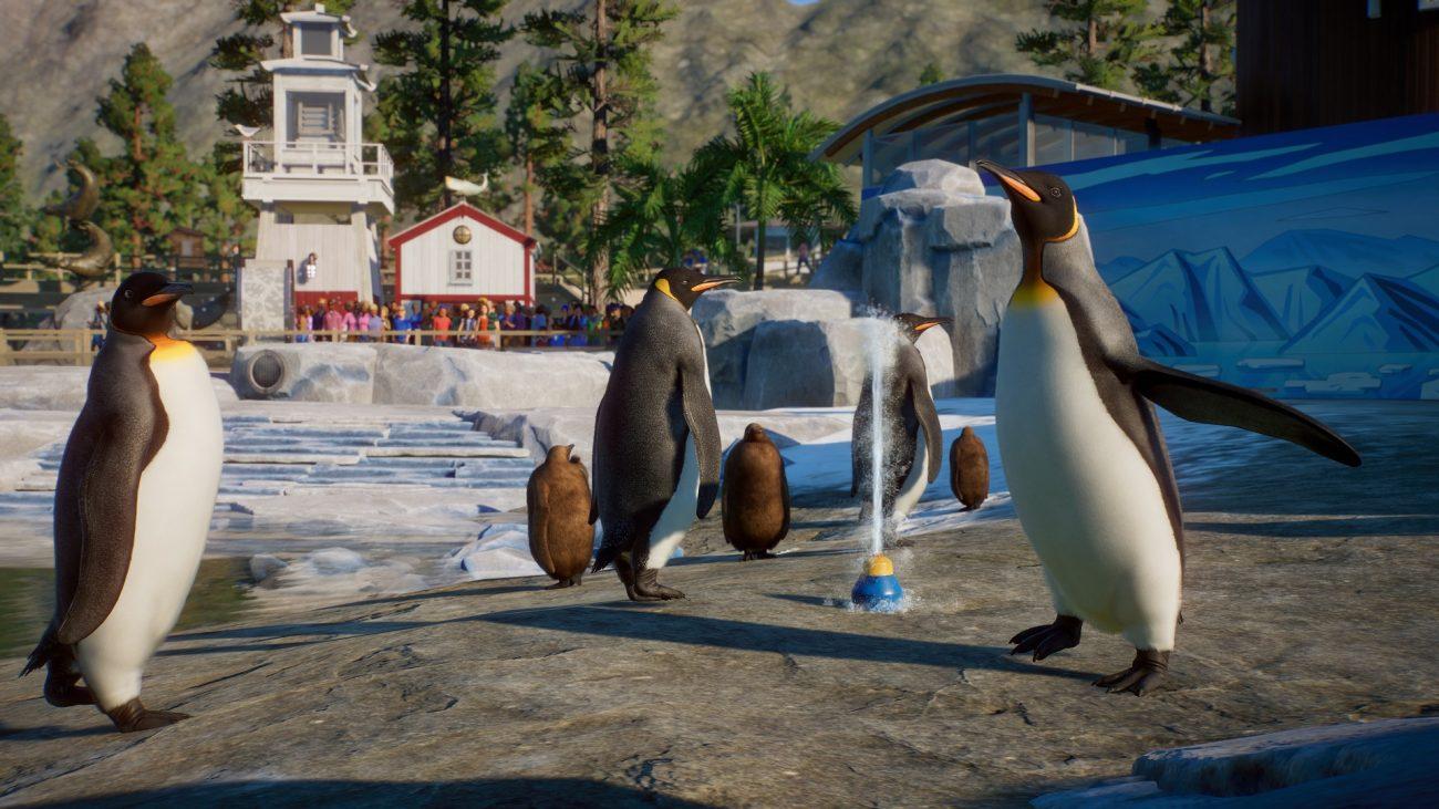 Planet Zoo Aquatic Pack Penguins 1300x731 - Make Waves in Planet Zoo's Upcoming Aquatic Pack DLC