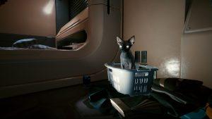 How to Get a Cat in Cyberpunk 2077